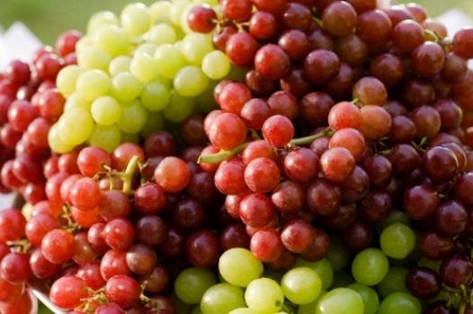 A uva ajuda a perder peso. (Foto: Divulgação)