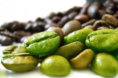 cofelen cafe verde