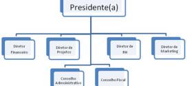 organograma modelo