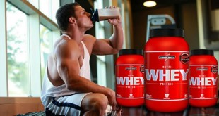 escolher whey protein